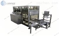 LD-03ZD 袋装产品装箱机